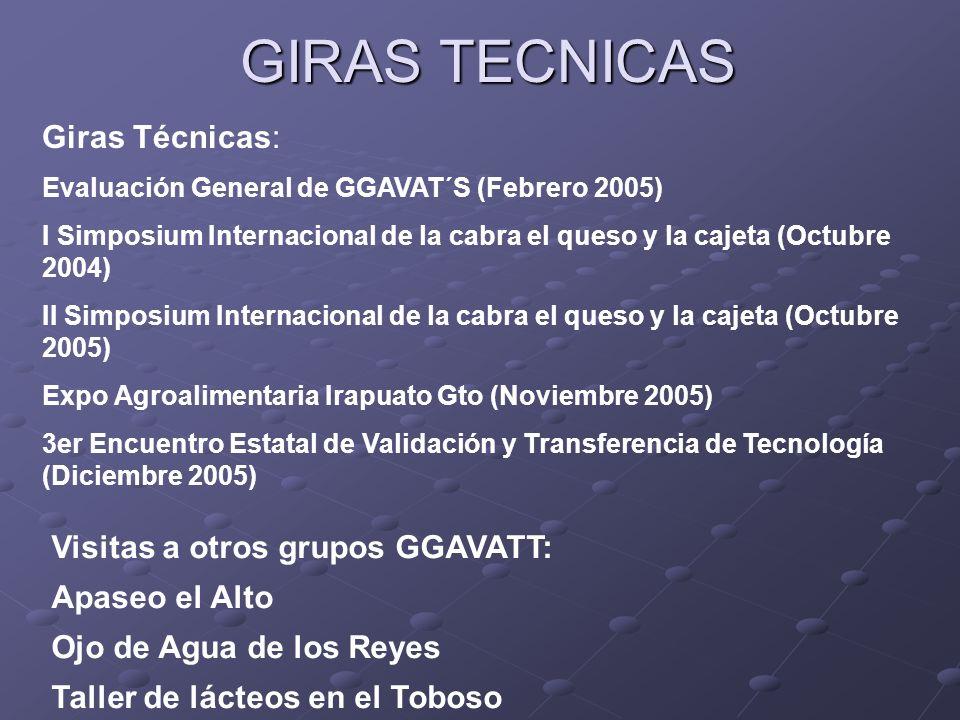 GIRAS TECNICAS Giras Técnicas: Visitas a otros grupos GGAVATT: