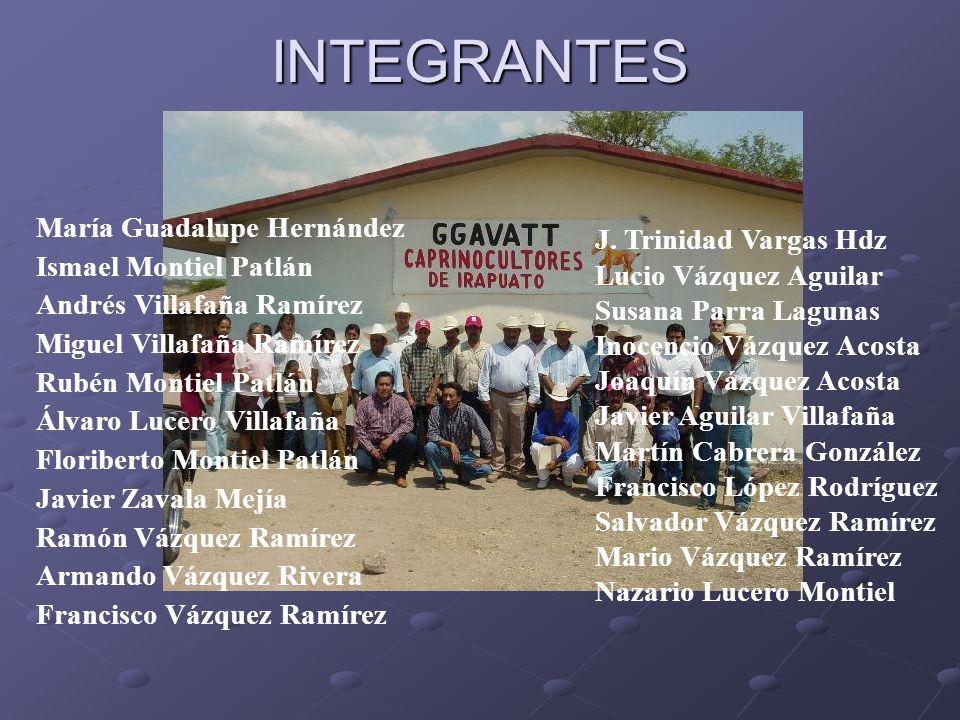 INTEGRANTES María Guadalupe Hernández Ismael Montiel Patlán