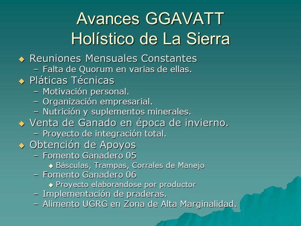 Avances GGAVATT Holístico de La Sierra