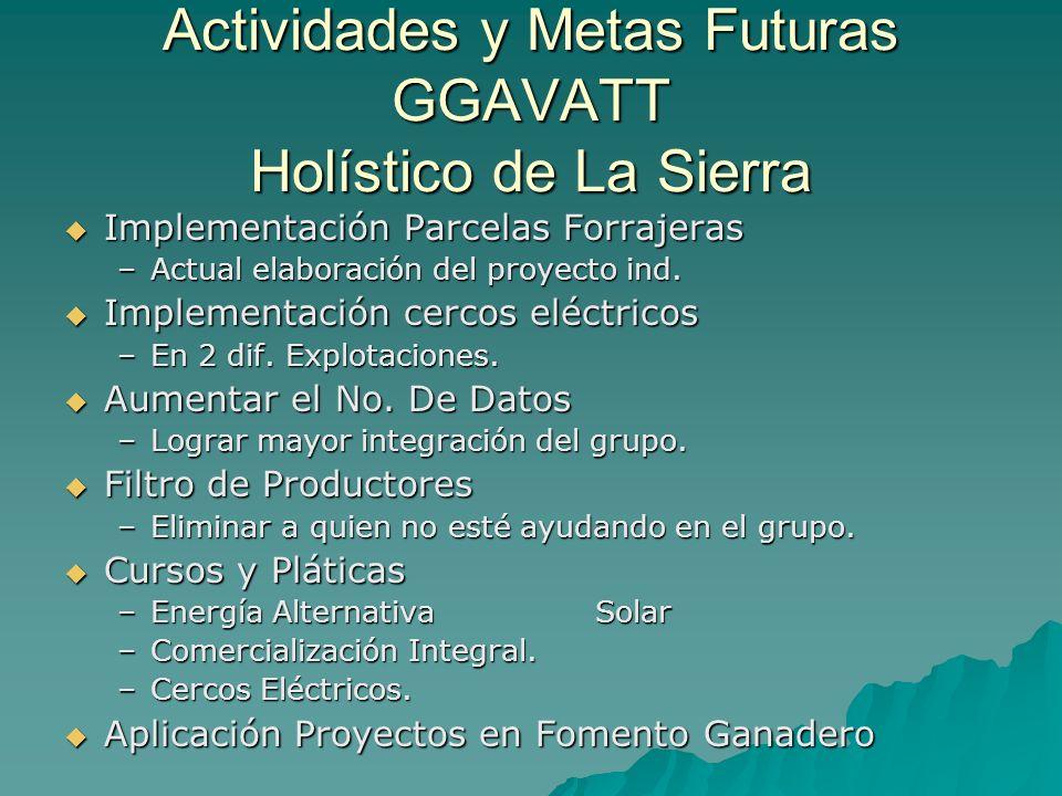 Actividades y Metas Futuras GGAVATT Holístico de La Sierra