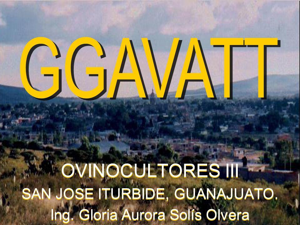 OVINOCULTORES III GGAVATT SAN JOSE ITURBIDE, GUANAJUATO.