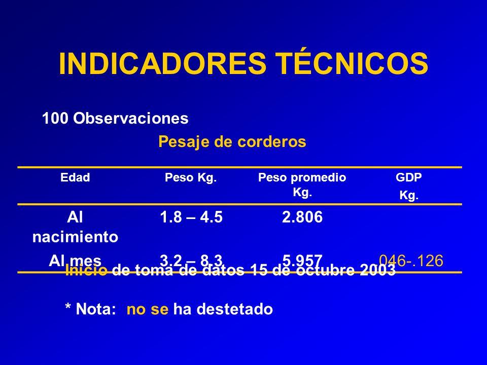 INDICADORES TÉCNICOS 100 Observaciones Pesaje de corderos