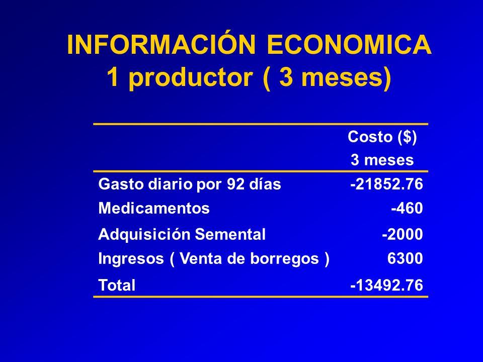 INFORMACIÓN ECONOMICA 1 productor ( 3 meses)