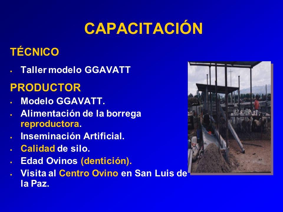 CAPACITACIÓN TÉCNICO PRODUCTOR Taller modelo GGAVATT Modelo GGAVATT.