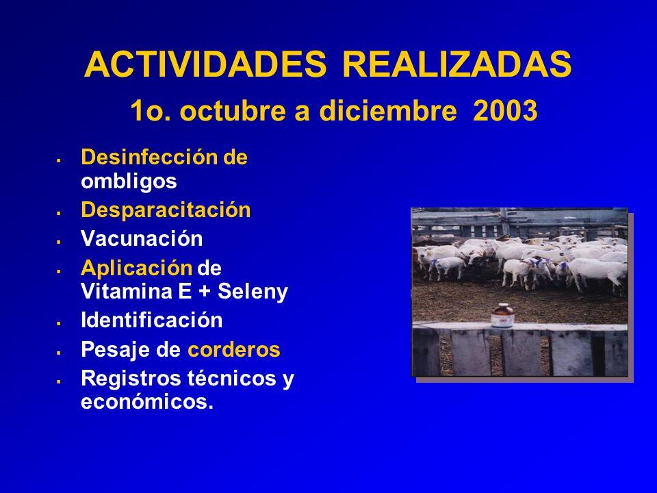 ACTIVIDADES REALIZADAS 1o. octubre a diciembre 2003