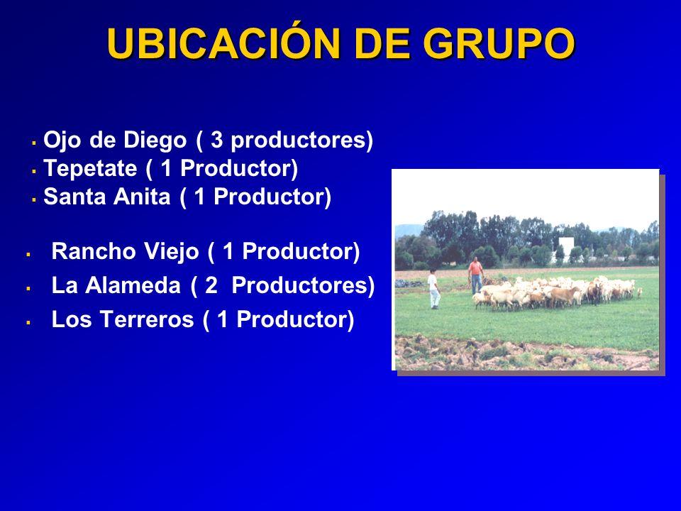 UBICACIÓN DE GRUPO Ojo de Diego ( 3 productores)