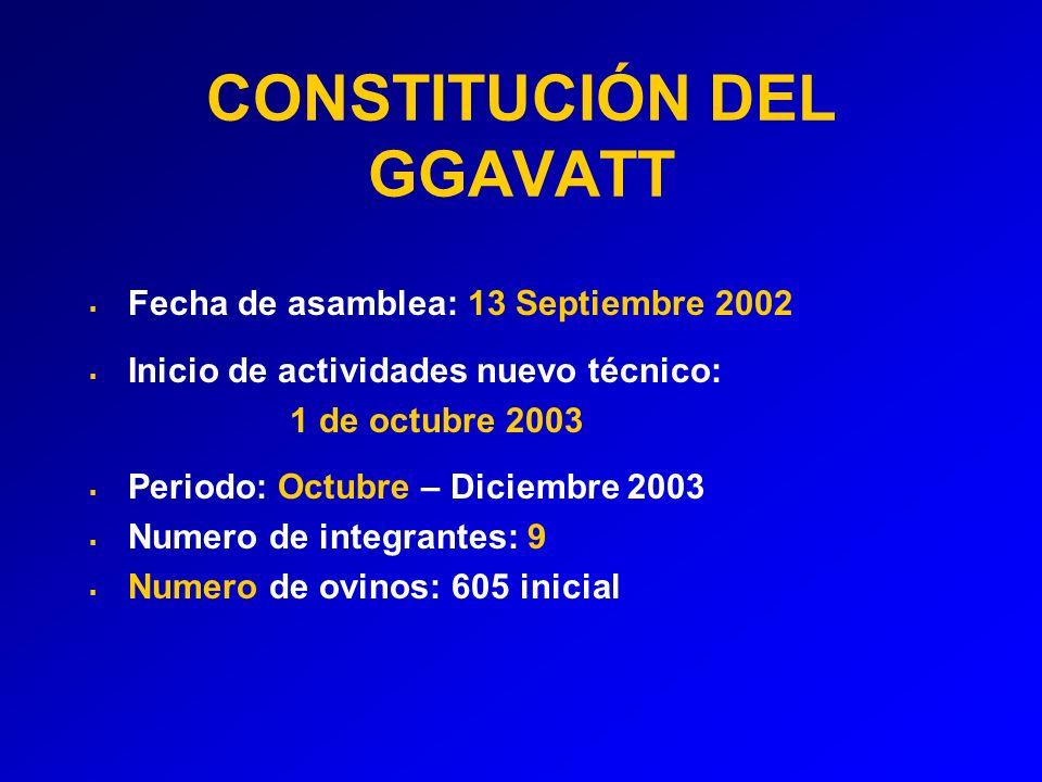 CONSTITUCIÓN DEL GGAVATT
