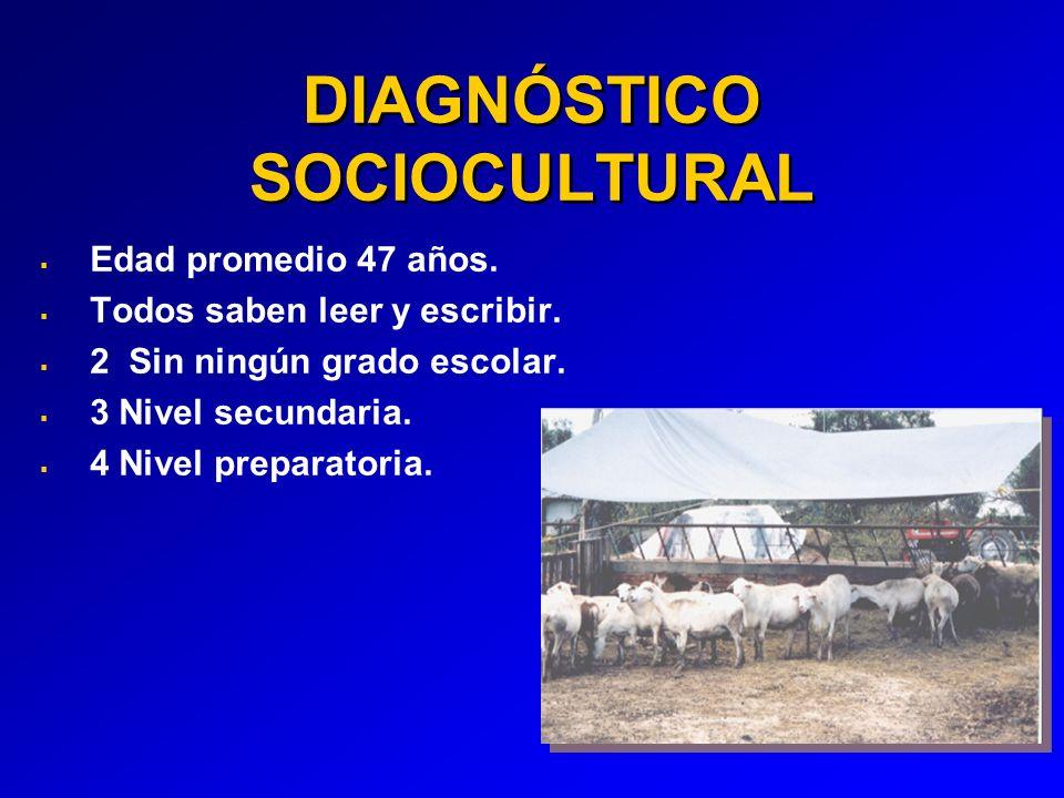 DIAGNÓSTICO SOCIOCULTURAL