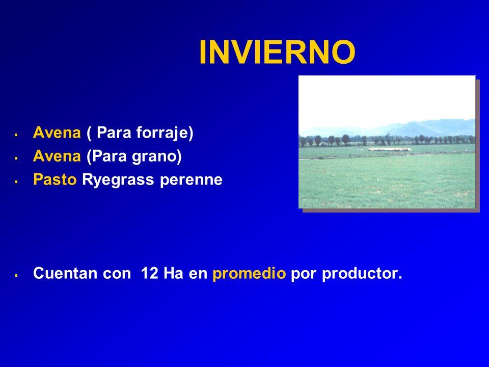 INVIERNO Avena ( Para forraje) Avena (Para grano)