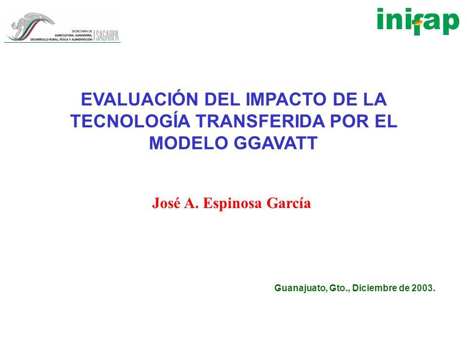 EVALUACIÓN DEL IMPACTO DE LA TECNOLOGÍA TRANSFERIDA POR EL MODELO GGAVATT