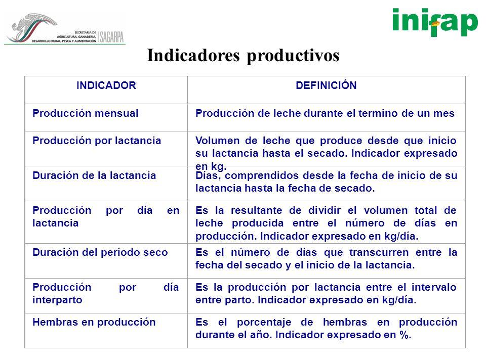 Indicadores productivos