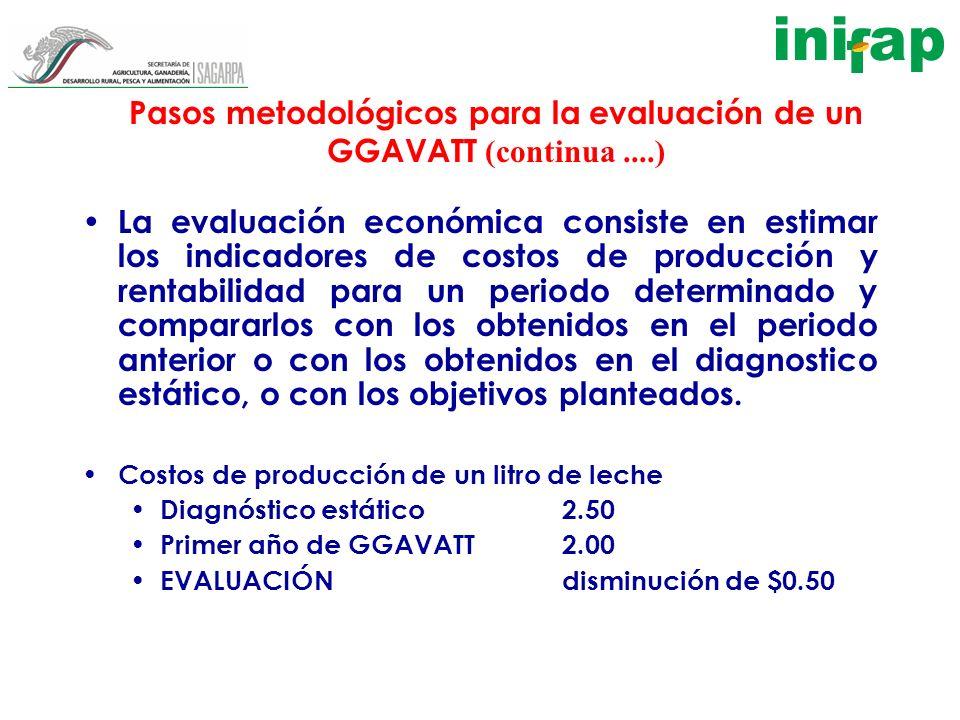 Pasos metodológicos para la evaluación de un GGAVATT (continua ....)