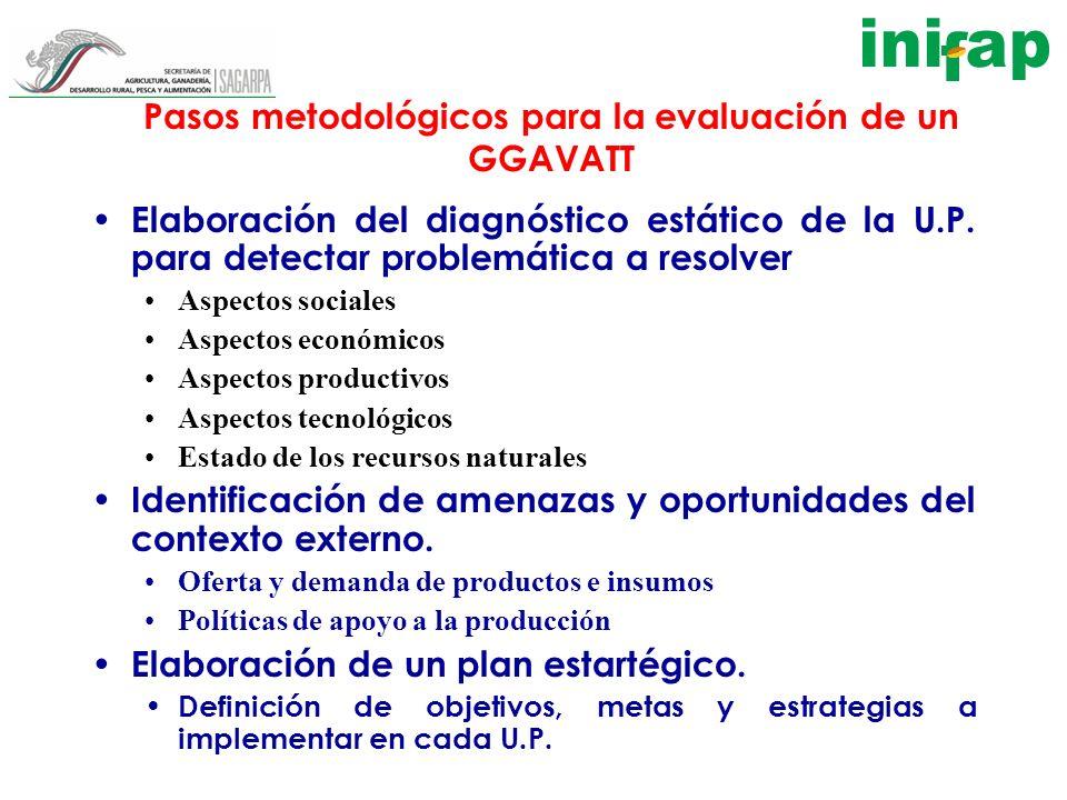Pasos metodológicos para la evaluación de un GGAVATT