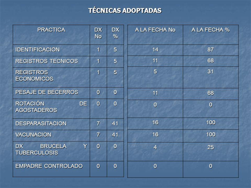 TÉCNICAS ADOPTADAS PRACTICA DX No DX % IDENTIFICACION 1 5
