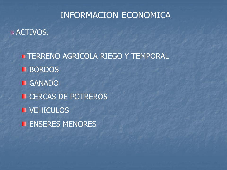 INFORMACION ECONOMICA