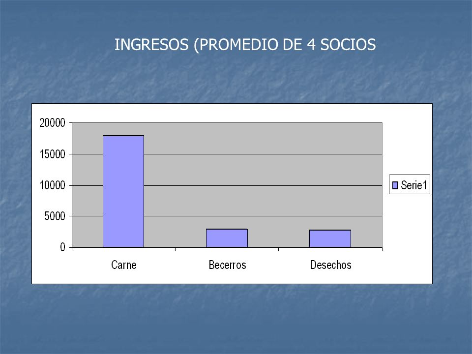 INGRESOS (PROMEDIO DE 4 SOCIOS