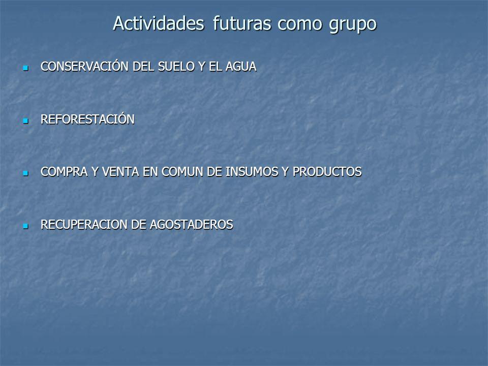 Actividades futuras como grupo