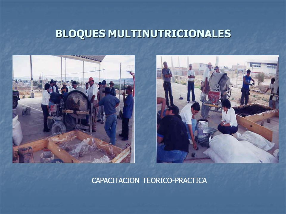 BLOQUES MULTINUTRICIONALES
