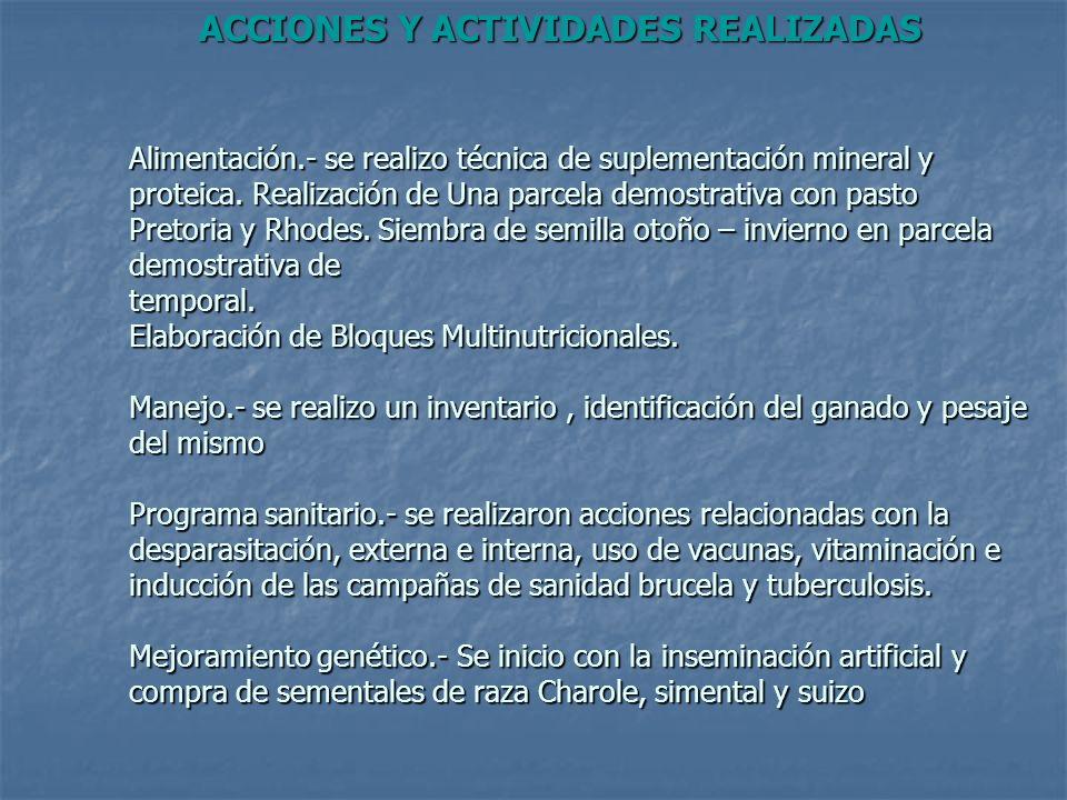 ACCIONES Y ACTIVIDADES REALIZADAS