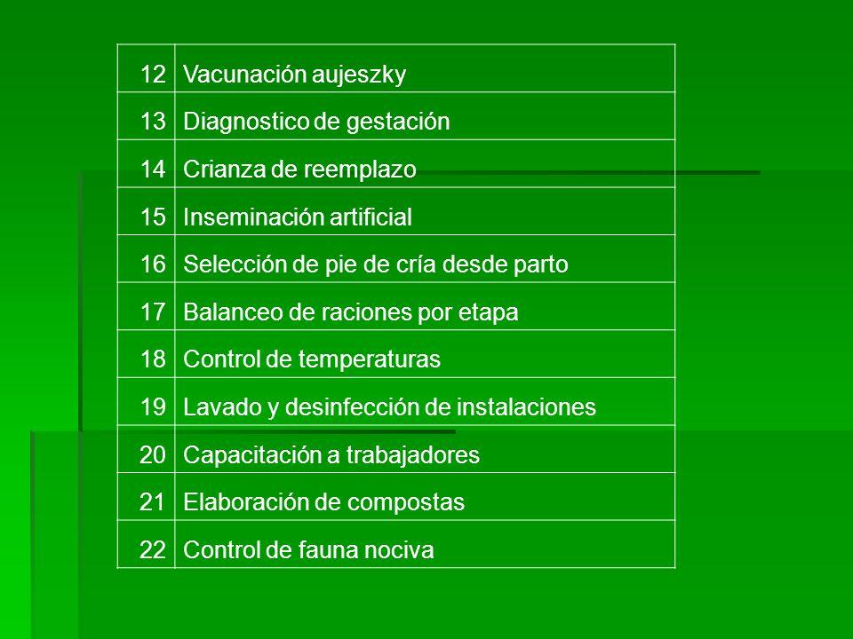 12Vacunación aujeszky. 13. Diagnostico de gestación. 14. Crianza de reemplazo. 15. Inseminación artificial.