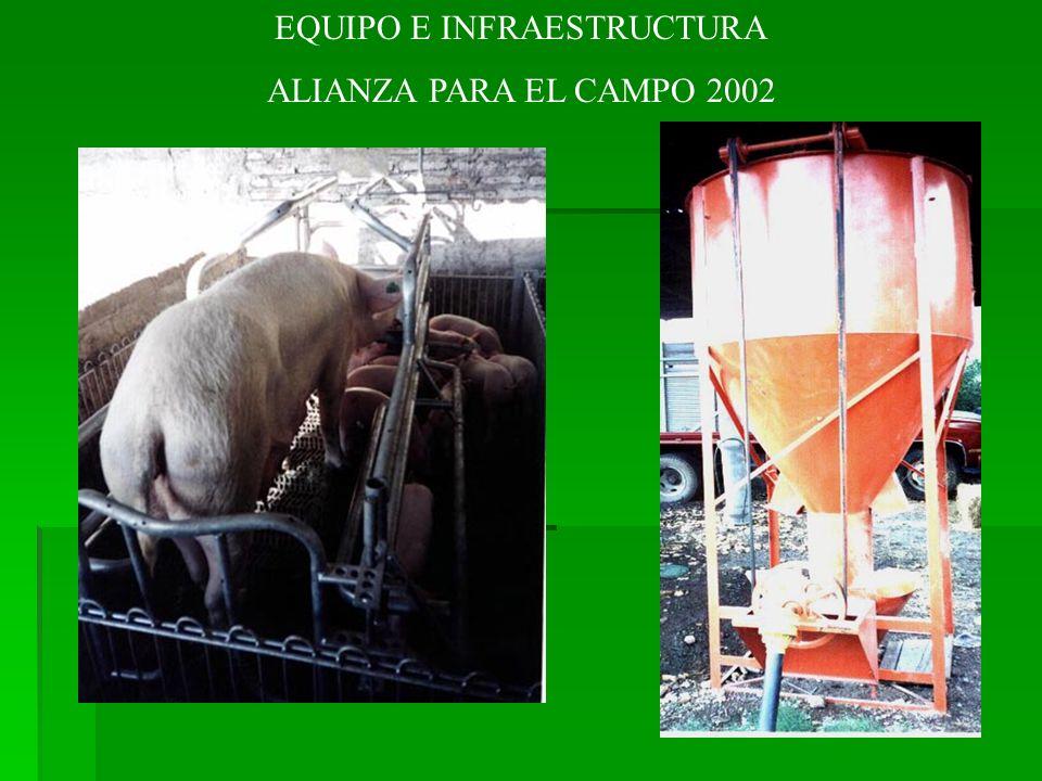 EQUIPO E INFRAESTRUCTURA