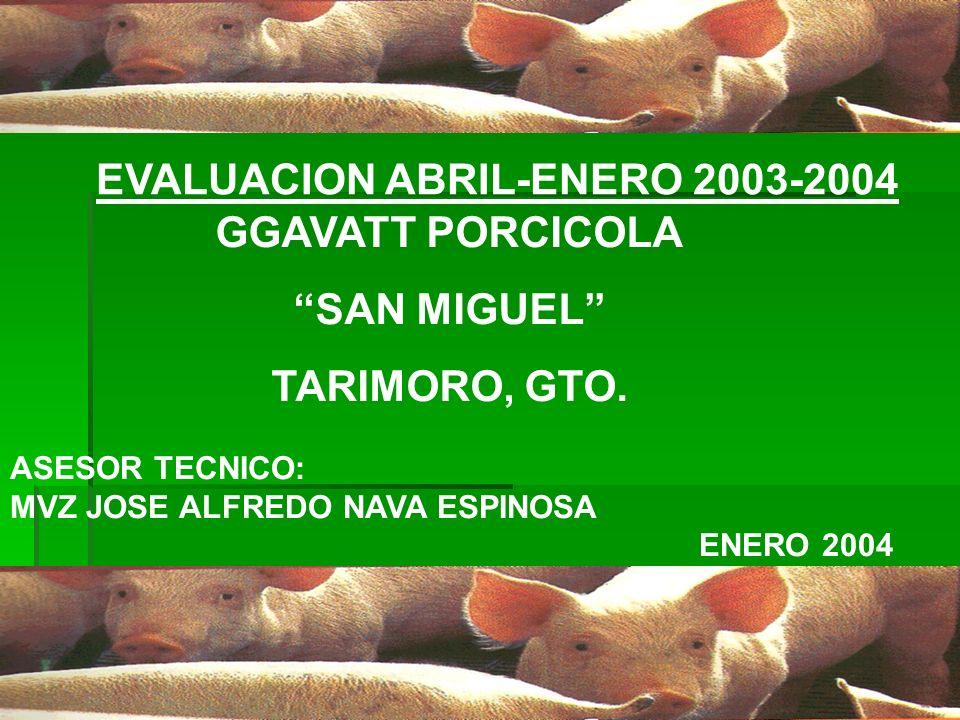 EVALUACION ABRIL-ENERO 2003-2004