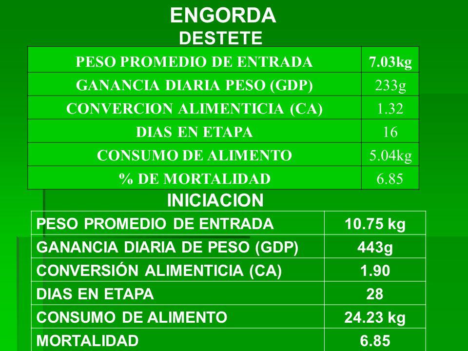 ENGORDA DESTETE INICIACION PESO PROMEDIO DE ENTRADA 7.03kg
