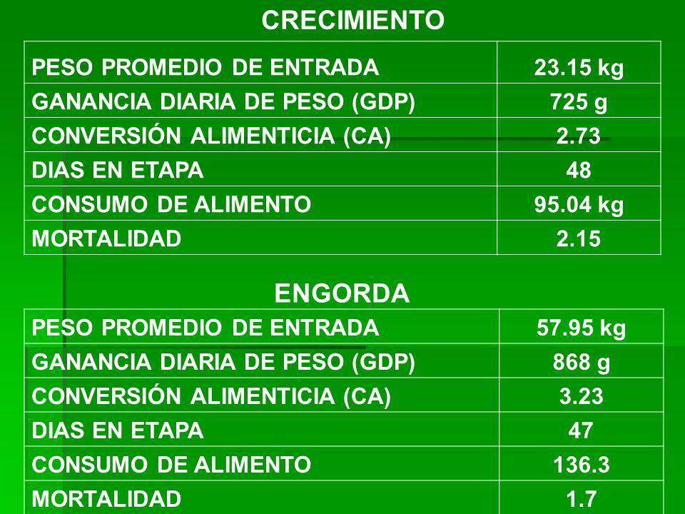 CRECIMIENTO ENGORDA PESO PROMEDIO DE ENTRADA 23.15 kg