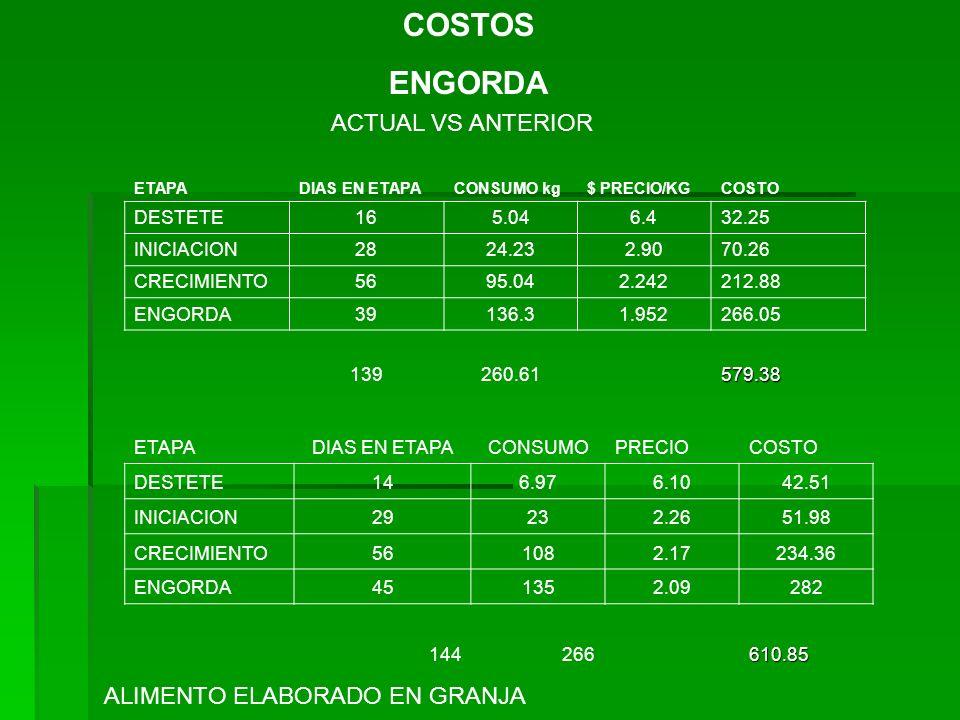 COSTOS ENGORDA ACTUAL VS ANTERIOR ALIMENTO ELABORADO EN GRANJA DESTETE