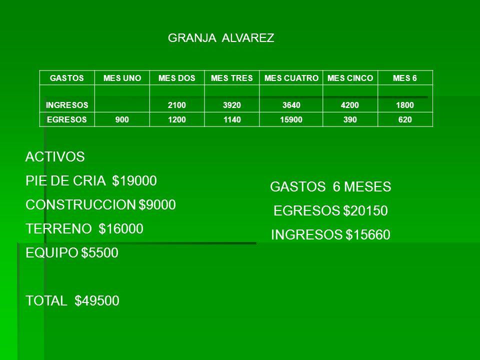 ACTIVOS PIE DE CRIA $19000 CONSTRUCCION $9000 GASTOS 6 MESES