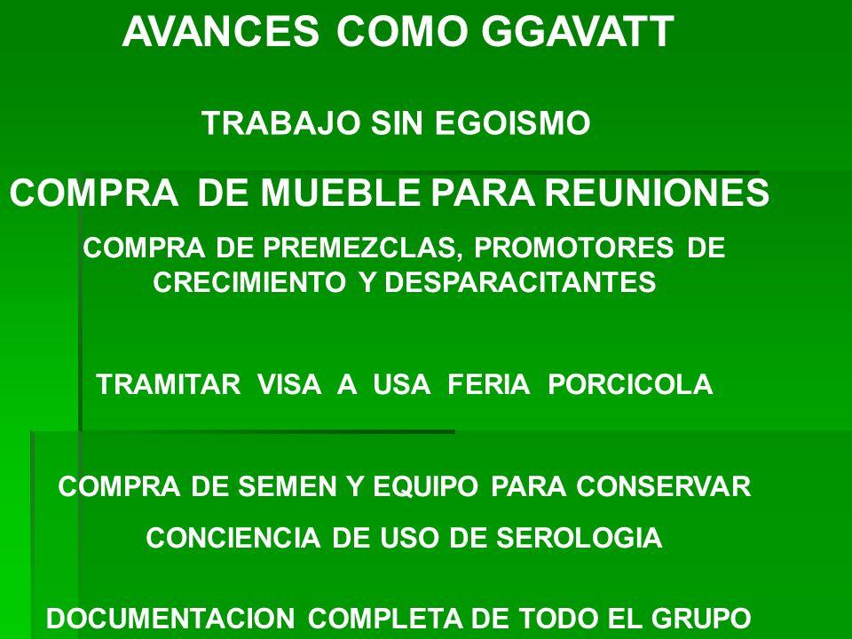 AVANCES COMO GGAVATT COMPRA DE MUEBLE PARA REUNIONES