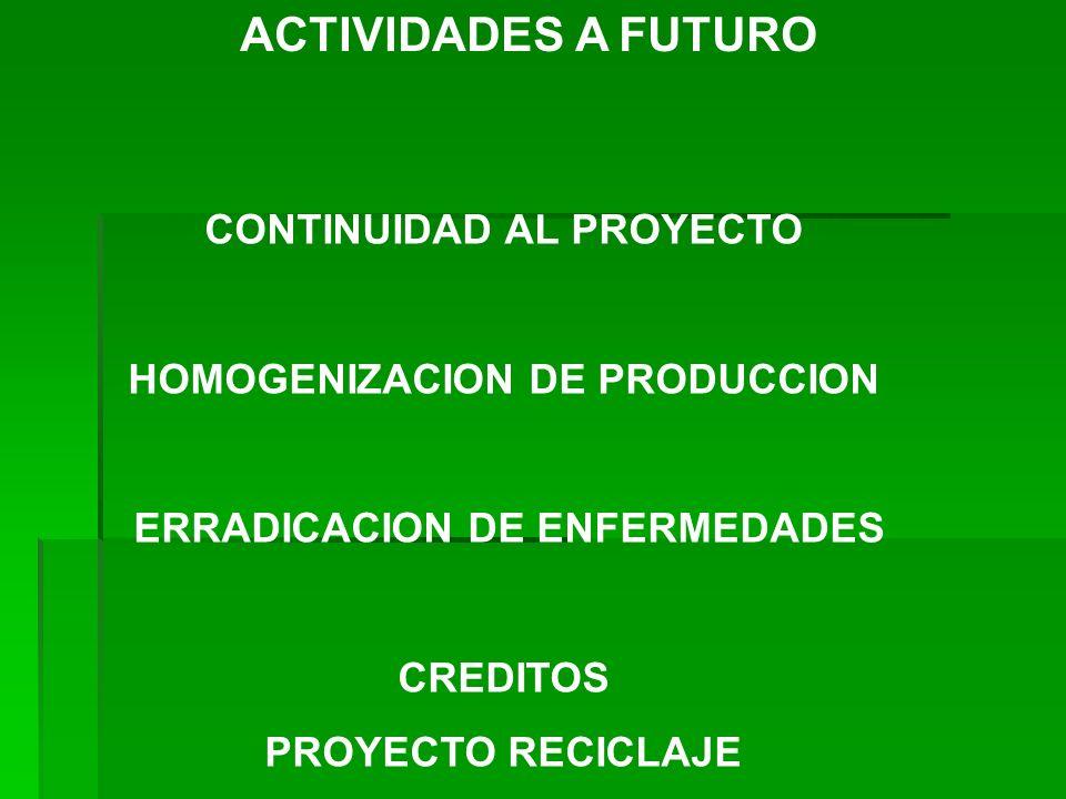 ACTIVIDADES A FUTURO CONTINUIDAD AL PROYECTO