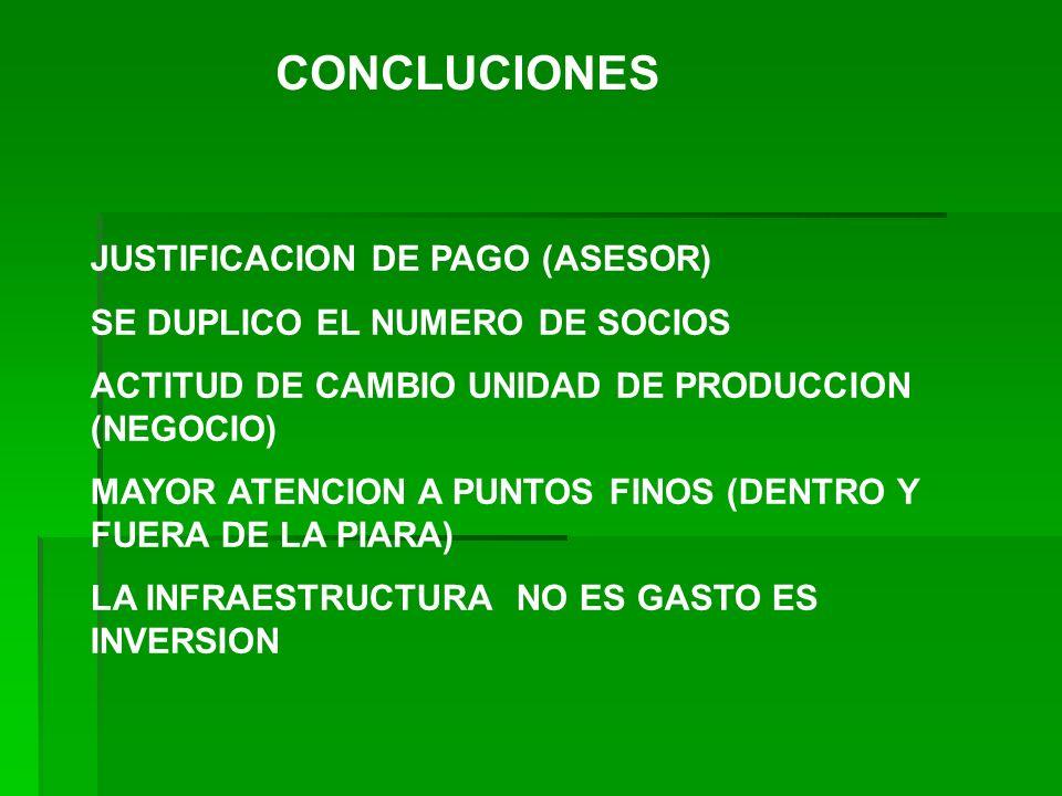 CONCLUCIONES JUSTIFICACION DE PAGO (ASESOR)