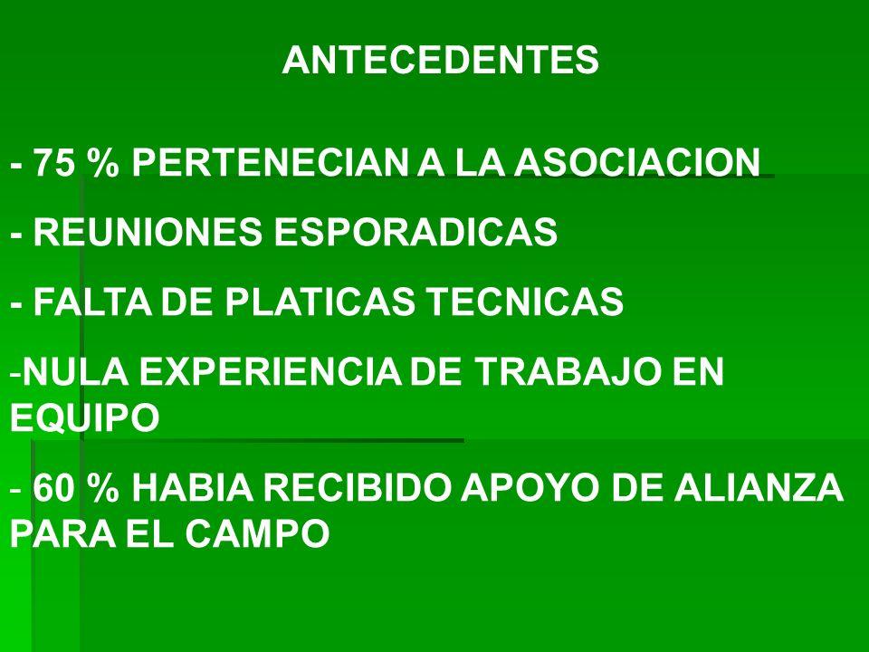 ANTECEDENTES - 75 % PERTENECIAN A LA ASOCIACION. - REUNIONES ESPORADICAS. - FALTA DE PLATICAS TECNICAS.