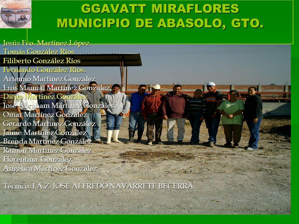 GGAVATT MIRAFLORES MUNICIPIO DE ABASOLO, GTO.