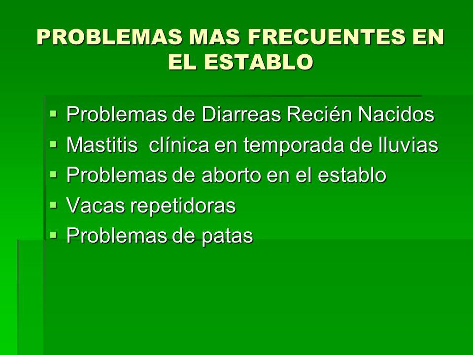 PROBLEMAS MAS FRECUENTES EN EL ESTABLO