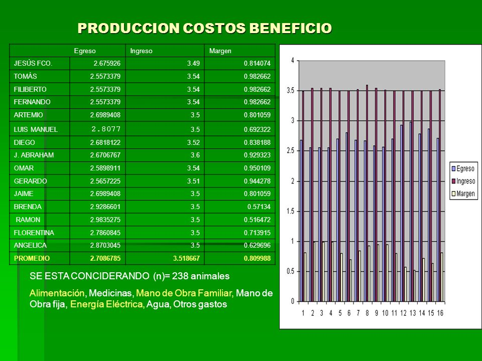 PRODUCCION COSTOS BENEFICIO