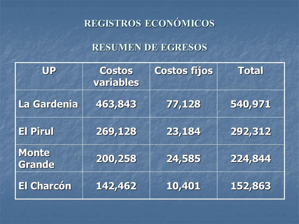 REGISTROS ECONÓMICOS RESUMEN DE EGRESOS