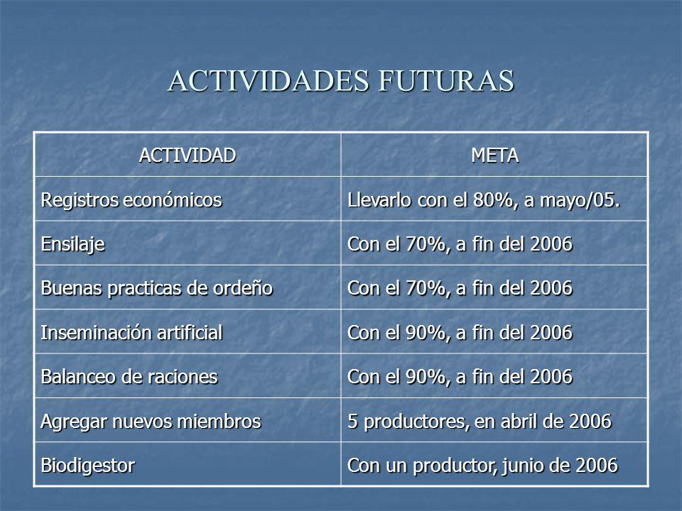 ACTIVIDADES FUTURAS ACTIVIDAD META Registros económicos