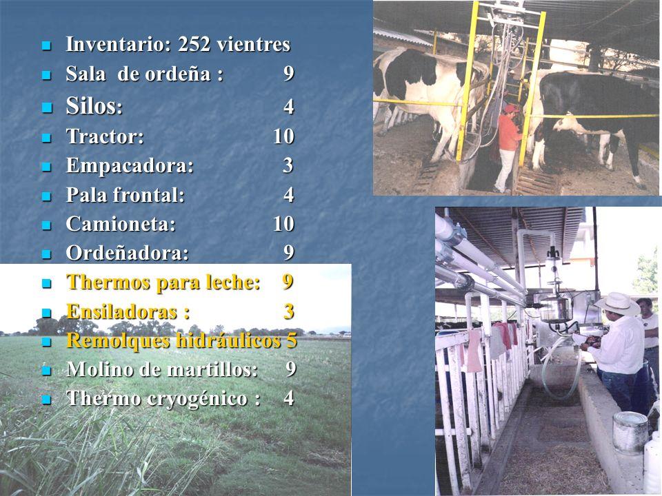 Silos: 4 Inventario: 252 vientres Sala de ordeña : 9 Tractor: 10