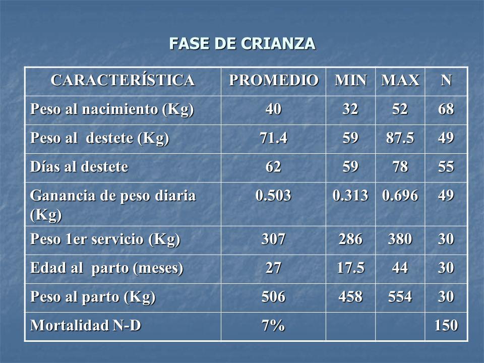 FASE DE CRIANZA CARACTERÍSTICA. PROMEDIO. MIN. MAX. N. Peso al nacimiento (Kg) 40. 32. 52. 68.