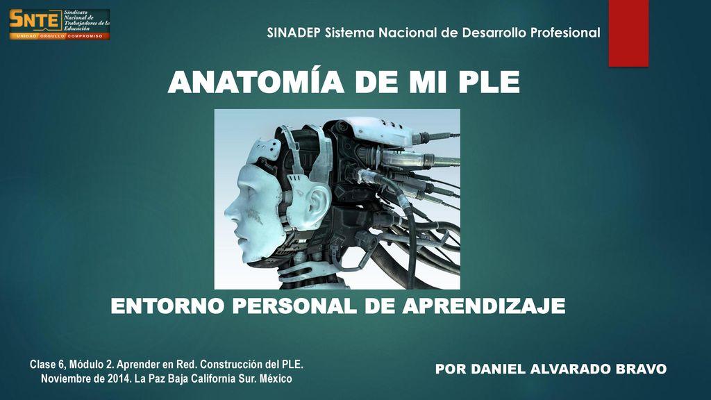Único Lumen Aprendizaje De La Anatomía Y Fisiología Motivo ...