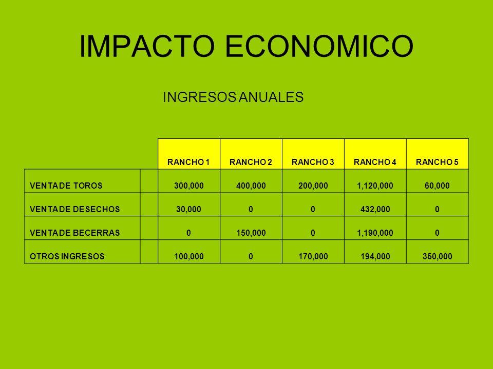 IMPACTO ECONOMICO INGRESOS ANUALES RANCHO 1 RANCHO 2 RANCHO 3 RANCHO 4