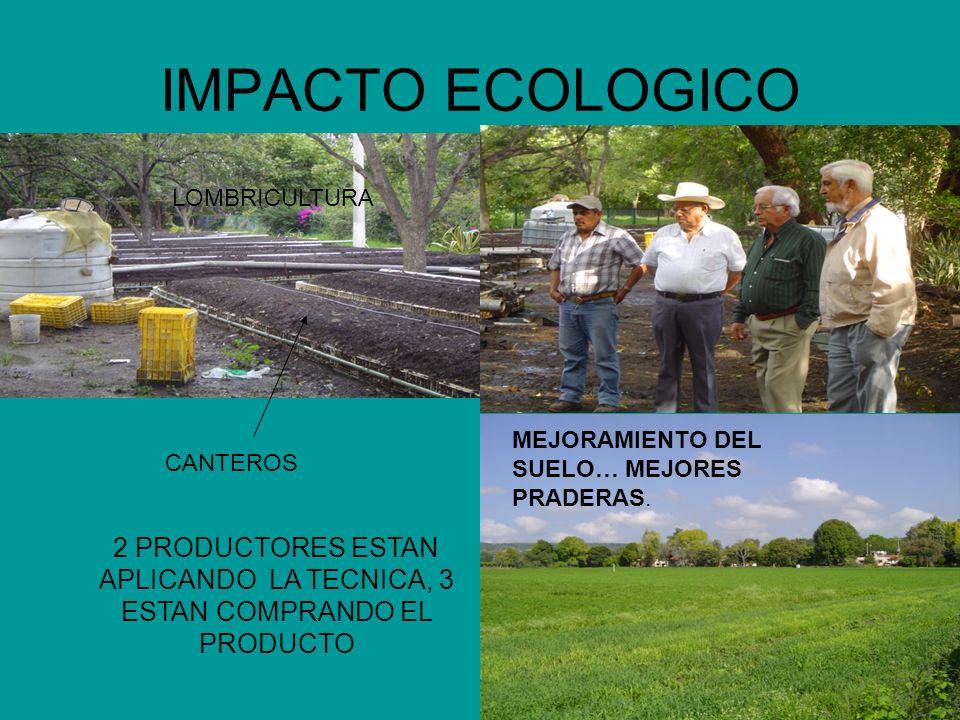 IMPACTO ECOLOGICOLOMBRICULTURA. MEJORAMIENTO DEL SUELO… MEJORES PRADERAS. CANTEROS.