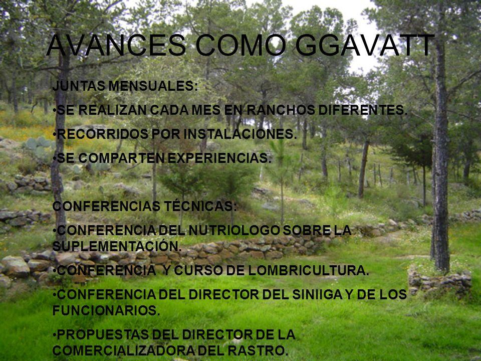 AVANCES COMO GGAVATT JUNTAS MENSUALES: