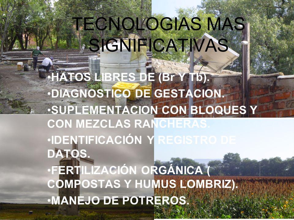 TECNOLOGIAS MAS SIGNIFICATIVAS