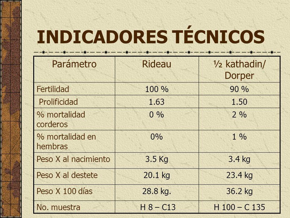 INDICADORES TÉCNICOS Parámetro Rideau ½ kathadin/ Dorper Fertilidad