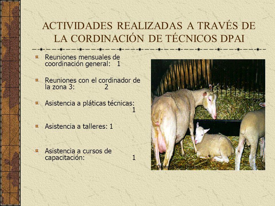 ACTIVIDADES REALIZADAS A TRAVÉS DE LA CORDINACIÓN DE TÉCNICOS DPAI