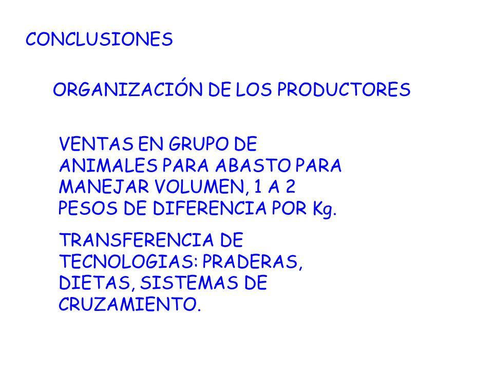CONCLUSIONESORGANIZACIÓN DE LOS PRODUCTORES. VENTAS EN GRUPO DE ANIMALES PARA ABASTO PARA MANEJAR VOLUMEN, 1 A 2 PESOS DE DIFERENCIA POR Kg.