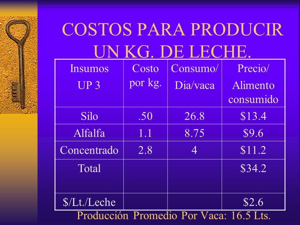 Insumos UP 3. Costo por kg. Consumo/ Dia/vaca. Precio/ Alimento consumido. Silo. .50. 26.8.